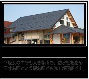 image_scu_03